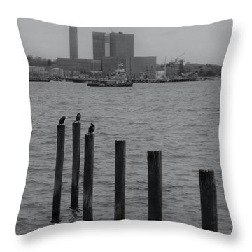 Q. River Throw Pillow