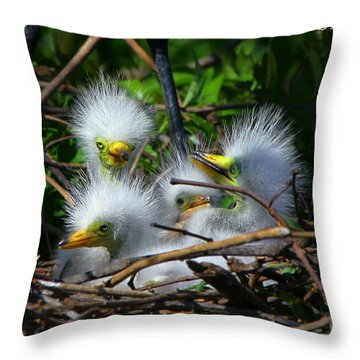 Quadruplets Throw Pillow