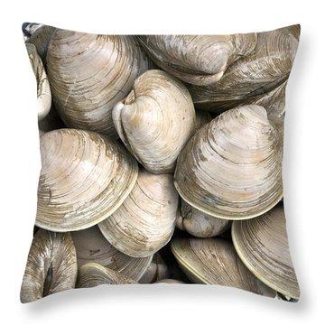 Barnstable Harbor Quahogs Throw Pillow