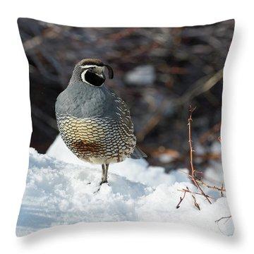 Quail Hollow Throw Pillow by Scott Warner