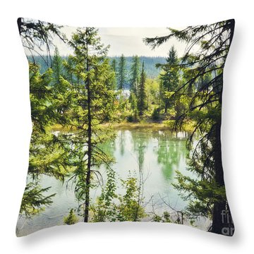 Quaint Throw Pillow