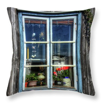 Quaint Window Throw Pillow