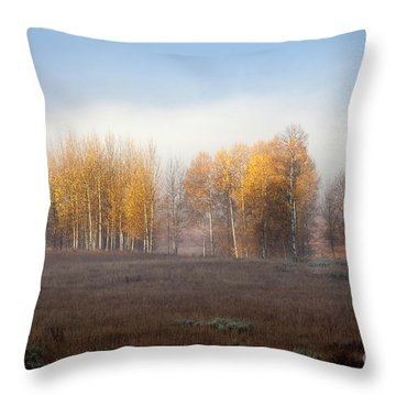 Quaking Aspen Trees At Dawn, Grand Teton National Park, Wyoming Throw Pillow