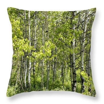 Quaking Aspens 2 Throw Pillow by Cynthia Powell