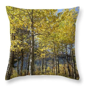 Throw Pillow featuring the photograph Quaking Aspens by Cynthia Powell