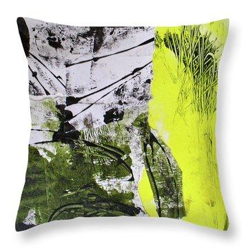 Quarto Iv Throw Pillow by Mary Sullivan