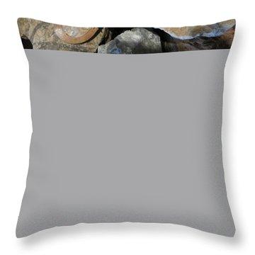 Quartz Agate Set In Gourd Wood #d140 Throw Pillow
