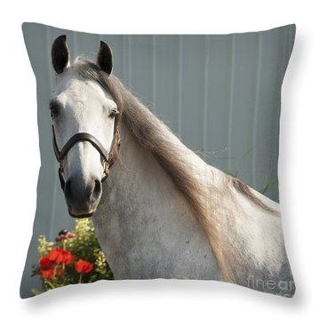 Throw Pillow featuring the photograph Que Pasa? by Carol Lynn Coronios