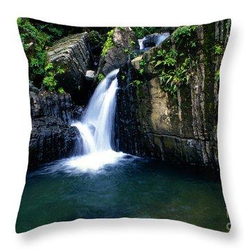 Quebrada Juan Diego Throw Pillow by Thomas R Fletcher