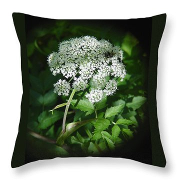 Queen Ann Lace Throw Pillow