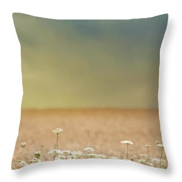 Throw Pillow featuring the photograph Queen Anne And Wheat by Rebecca Cozart