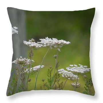 Queen Anne Lace Wildflowers Throw Pillow