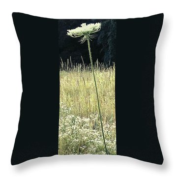 Queen Anne Throw Pillow
