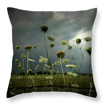 Queen Anne's Lace 3 Throw Pillow