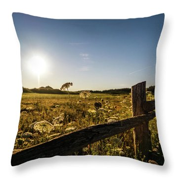 Throw Pillow featuring the photograph Queen Annes Lace Along Cavendish Fencerow by Chris Bordeleau