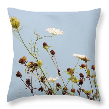 Queen Anne's Lace And Dried Clovers Throw Pillow by Lise Winne