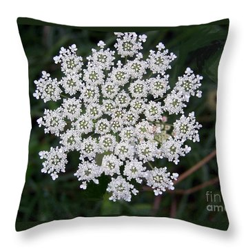 Throw Pillow featuring the photograph Queen Anne's Lace by Charles Robinson