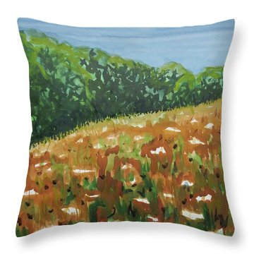 Queen Anne's Lace Field Throw Pillow by Bethany Lee