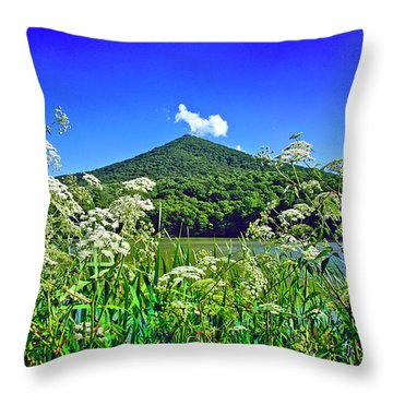 Queen Anne's Lace, Peaks Of Otter  Throw Pillow