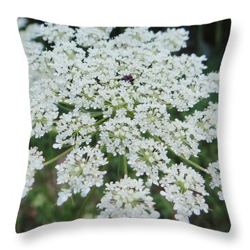 Queen Ann's Lace 2 Throw Pillow
