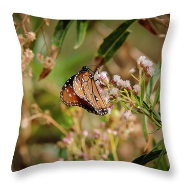 Queen Of The Hassayampa Throw Pillow