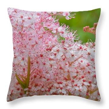 Queen Of The Prairie Nature Art Throw Pillow