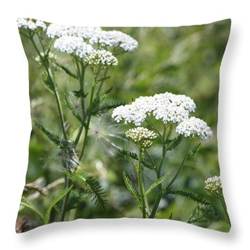 Queen Trio Throw Pillow