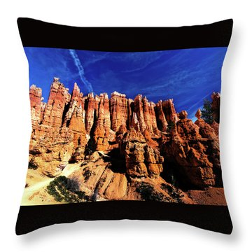 Throw Pillow featuring the photograph Queens Garden by Norman Hall