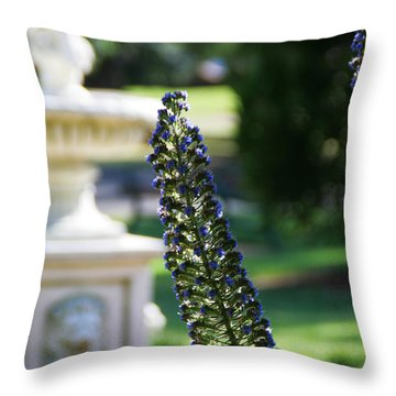 Queens's Park Vista Throw Pillow
