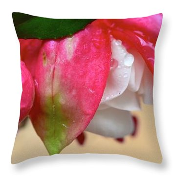 Throw Pillow featuring the photograph Quenched by Corinne Rhode
