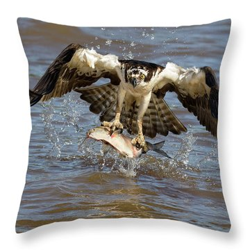 Quick Snatch Throw Pillow