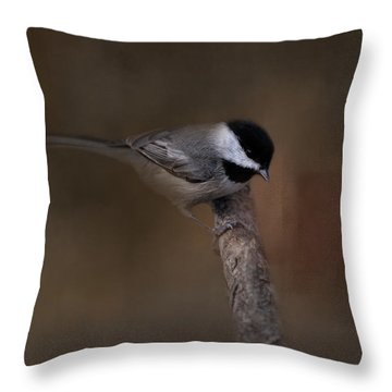 Quicksilver 2 Throw Pillow