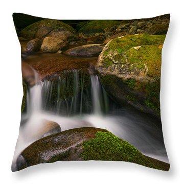 Quiet Beauty Throw Pillow