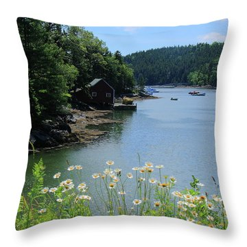 Quiet Cove 2 Throw Pillow