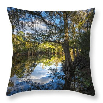 Quiet Embrace Throw Pillow