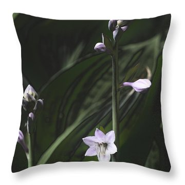 Quiet Life Throw Pillow