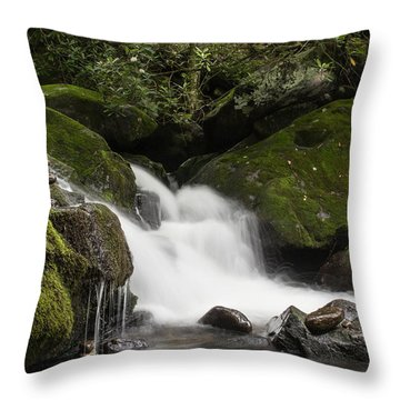 Throw Pillow featuring the photograph Quiet Meditation  by Julie Andel
