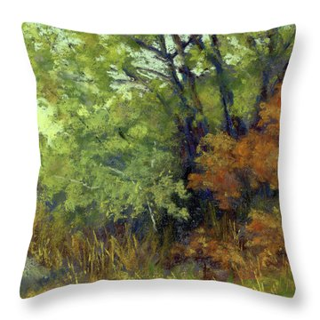 Quiet Moment Throw Pillow