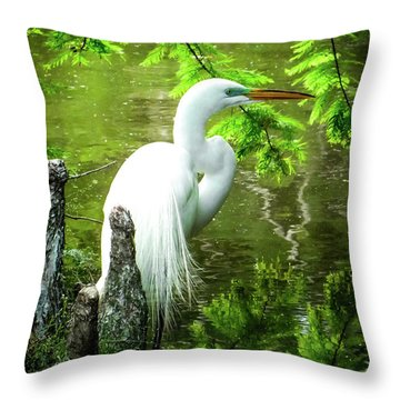 Quiet Moments Of Elegance Throw Pillow by Karen Wiles