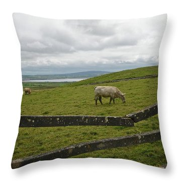 Quiet Pasture Throw Pillow