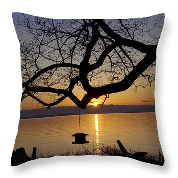 Quiet Place Throw Pillow by Elvira Butler