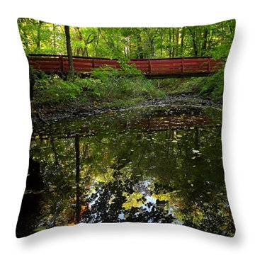 Throw Pillow featuring the photograph Quiet Reflections by Viviana  Nadowski