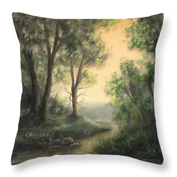 Quiet Stream  Throw Pillow