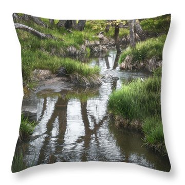 Quiet Stream Throw Pillow
