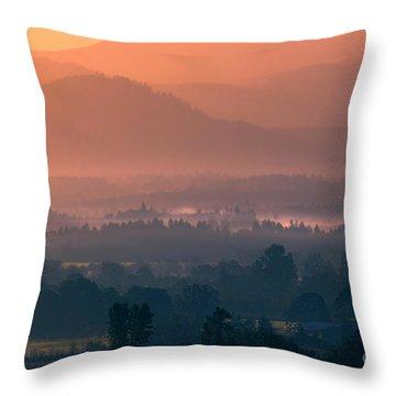Quiet Sunrise Throw Pillow by Erica Hanel