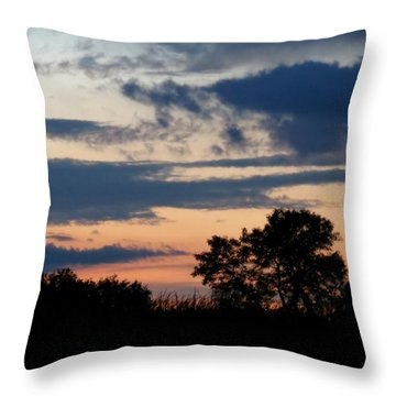Quiet Thoughts Throw Pillow by Kyle West