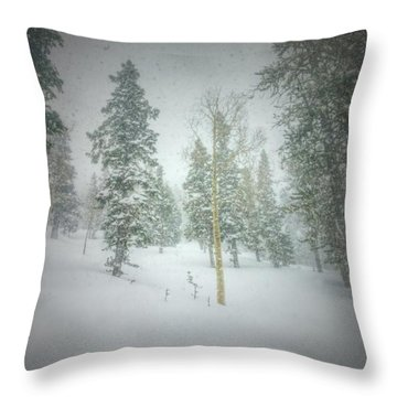 Throw Pillow featuring the photograph Quiet Turns  by Mark Ross