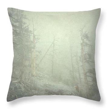 Quiet Type Throw Pillow