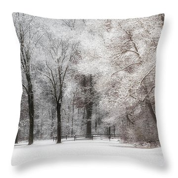 Quiet Winter  Throw Pillow