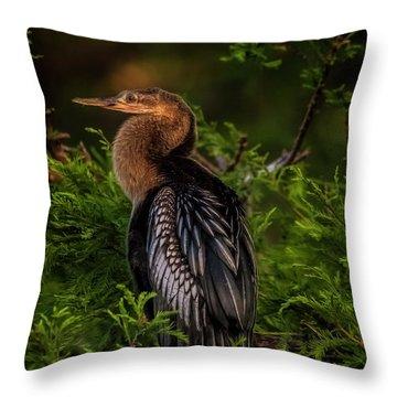 Quietude Throw Pillow by Cyndy Doty